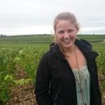 in den Weinfeldern